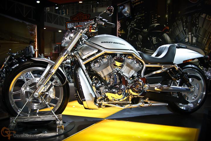 Harley-Davidson Night Rod #umamotopordia #osvaldofuriatto