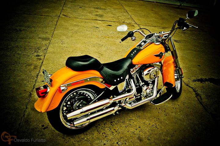 Harley-Davidson Fat Boy #umamotopordia #osvaldofuriatto