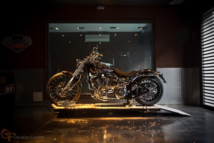 Harley-Davidson CVO Breakout #umamotopordia #osvaldofuriatto