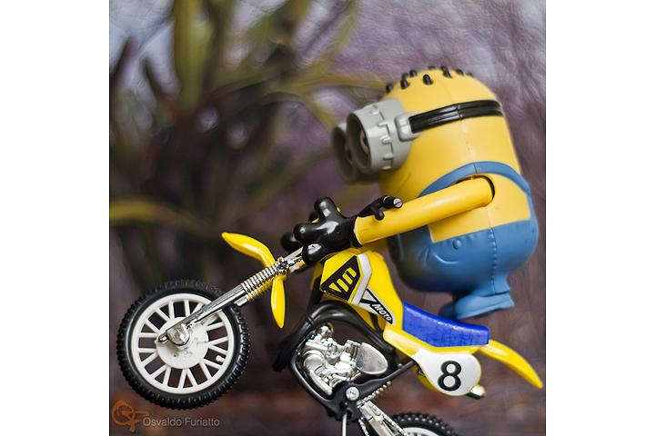 Minions em uma moto por dia: Dia 20