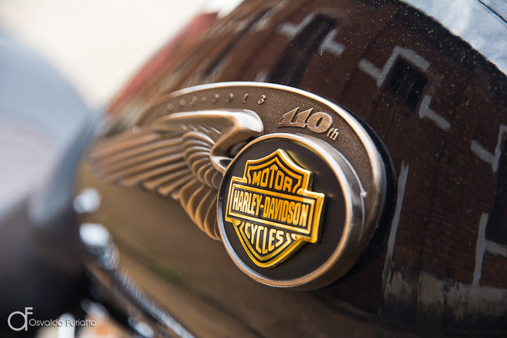 Harley-Davidson Dyna Super Glide 110th Anniversary