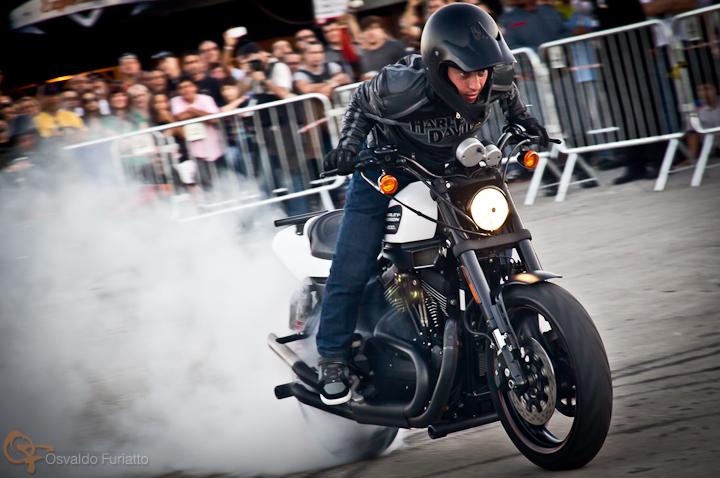 Motos em Ação com Harley-Davidson XR 1200X #umamotopordia #osvaldofuriatto